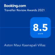 Booking.com Traveller Review Awards 2021 8.5 out of 10