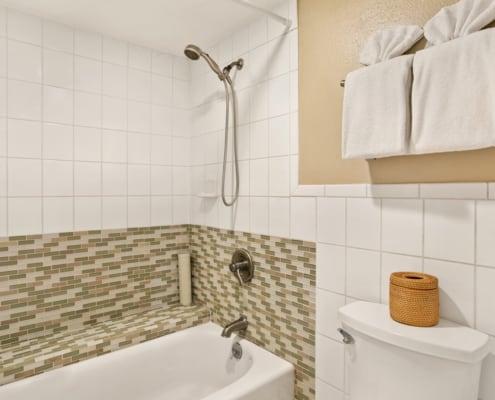 1-Bedroom Ocean View Shower