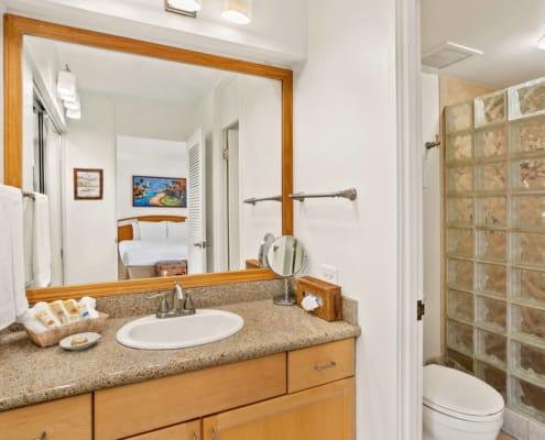Hotel Room Deluxe Bathroom