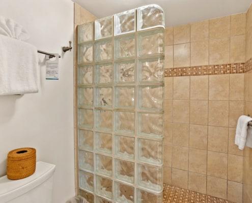 Hotel Room Deluxe Shower